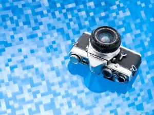 summer2007 01 R